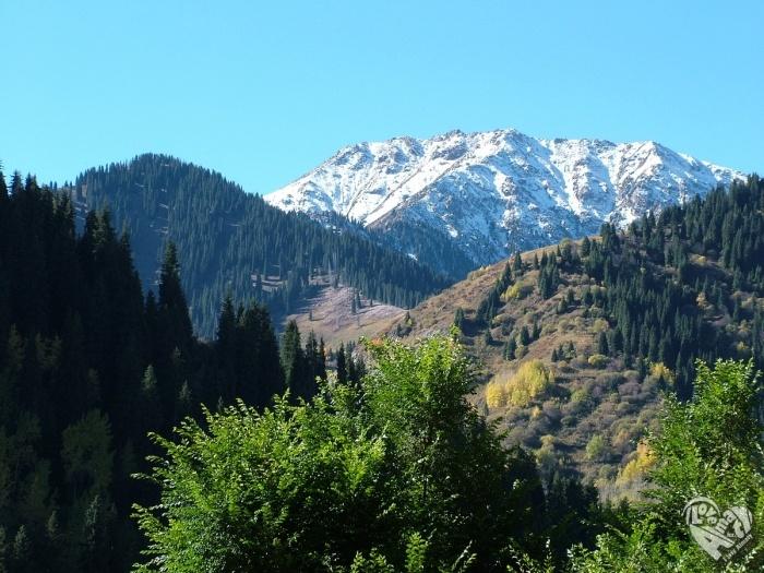 горы Алматы Заилийский Алатау