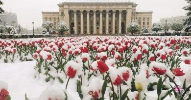 Снегопад 22 апреля в Алматы